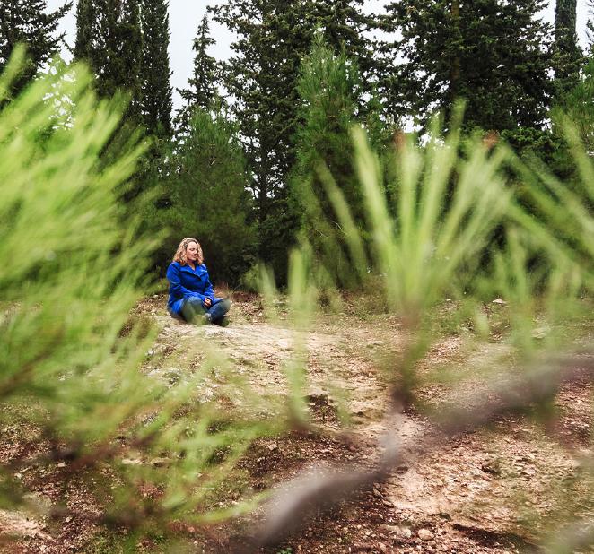 עמית עמר ביער