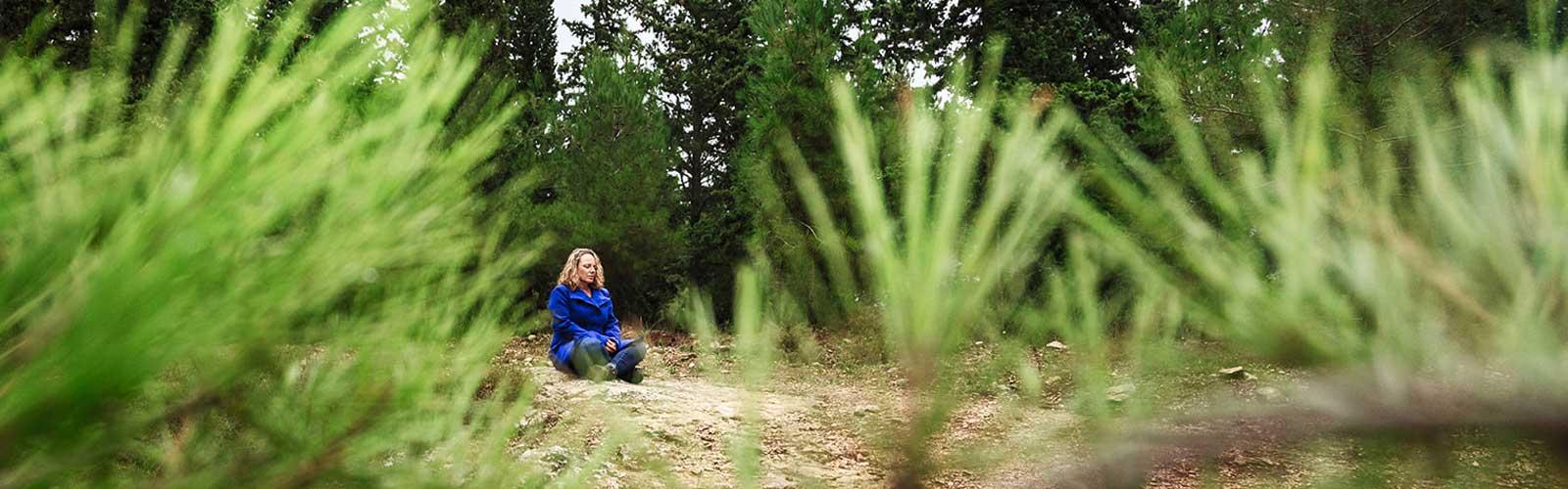 הודעות - עמית עמר יושבת ביער